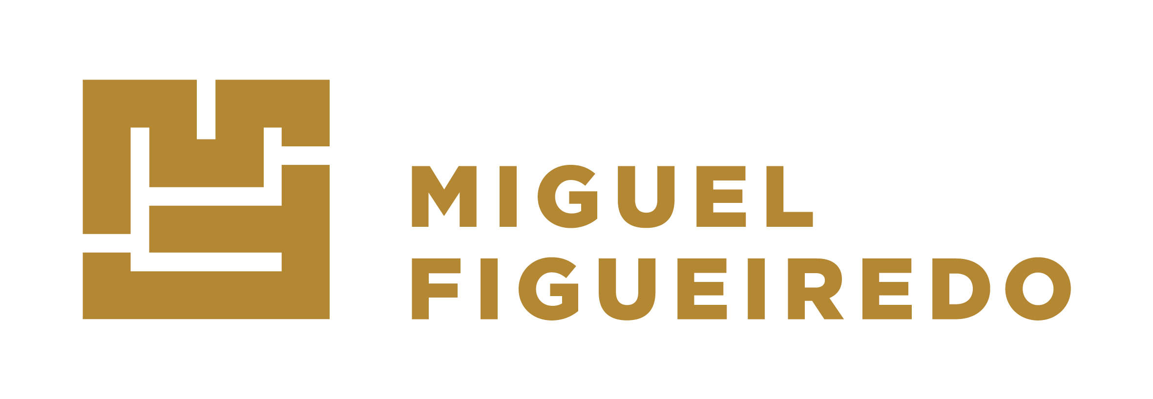 Miguel Figueiredo